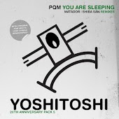 You Are Sleeping (PQM meets Luke Chable Vocal Pass)