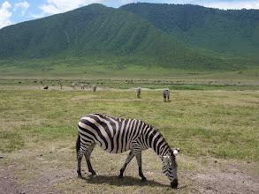 Photo: Zebra crossing