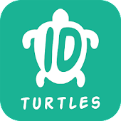 Ocean Life ID - Turtles