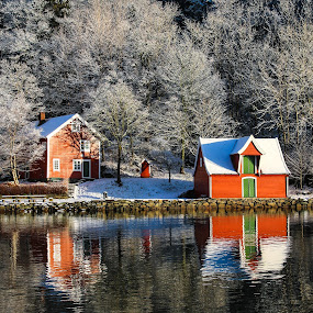 Winter by Espen Rune Grimseid - Buildings & Architecture Homes ( canon, bergen, winter, snow, buildings, trees, reflections, norway )