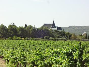 château à Lézignan-Corbières (11)