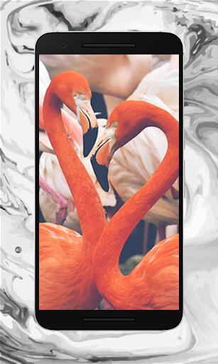 Screen Lock HD 1.3.2 app download 4