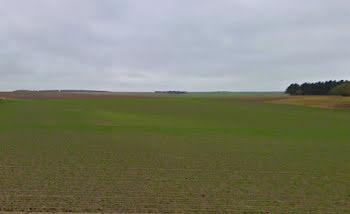 terrain à Somme-Vesle (51)