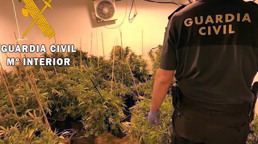 Se hacen pasar por guardias civiles para robar marihuana en Benahadux