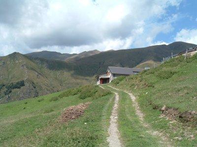 Alpe Rozzo (Cusino)
