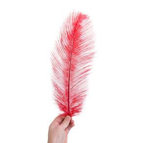 Plym, stor 40-45cm röd