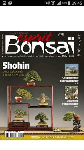 Esprit Bonsai