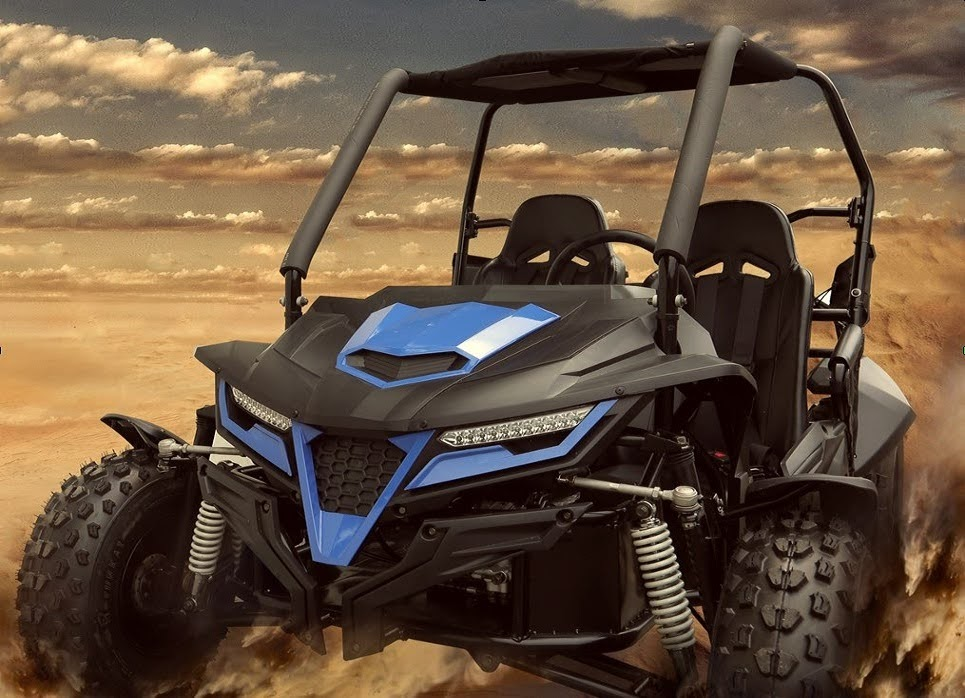 300cc Trailmaster Cheetah Dune Buggy 17.4hp Kids Adults Offroad GoCart