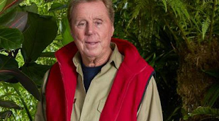 Harry Redknapp nearly dropped out of I'm A Celebrity