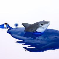 Blue shark di