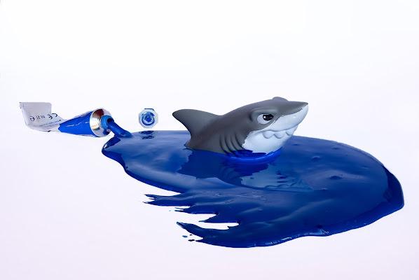 Blue shark di BastetC
