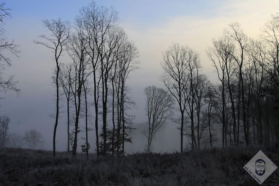 KÉP / Köd alattam