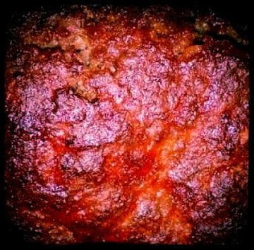 Campfire Marshmallow Meatloaf ! Recipe