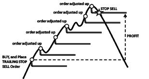 stop loss and take profit