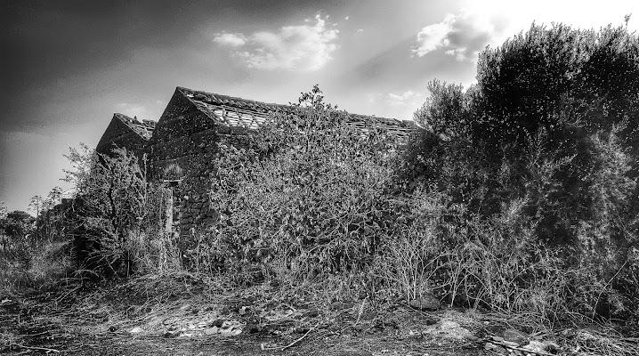 Vecchie case di campagna di Massimo_Vitellino