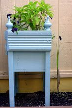 Photo: Pineapple sage in a fancy little blue planter--I used lots of Victorian trim to dress up ordinary planter boxes.