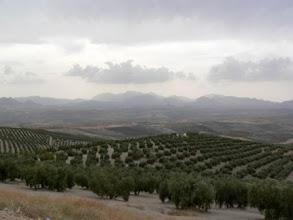 Photo: Spanien/Andalusien: C - 323 Sierra de Cazorla; Blick auf die Sierra Nevada. (Urheberrecht: Robert Mayer)