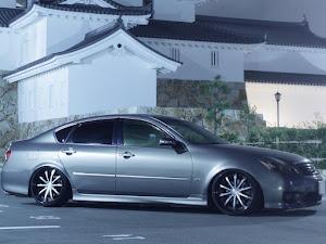 フーガ y50 type Sのカスタム事例画像 ふなぴぃさんの2020年08月14日07:40の投稿