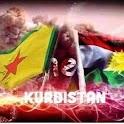Kurdistan News كوردستان نيوز icon