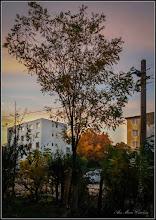 Photo: Pe inserat - vedere din spatiul verde al blocului B15 - 2017.10.19