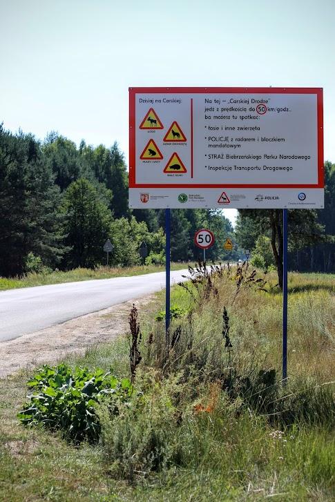 znak na Carskiej Drodze