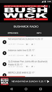 BUSHWICK RADIO- screenshot thumbnail