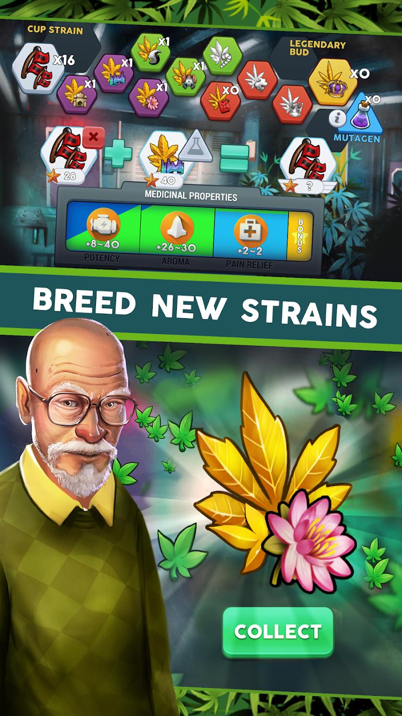 Hempire - Plant Growing Game Screenshot 5