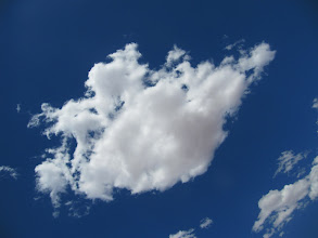 Photo: Year 2 Day 219 - I Wandered Lonely As a Cloud
