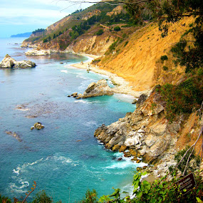 Julia Pfeiffer Burns State Park by Shanna Twomey - Nature Up Close Water ( sand, leaves. waves, state park, beach, rocks )