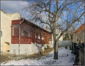 Photo: Măr (Malus)  - din Turda, Str. Salinelor, Nr.15 - 2018.12.13