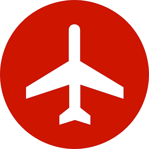 Airline CEO