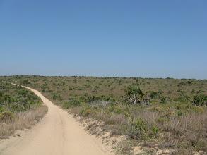 Photo: Pomene National Reserve