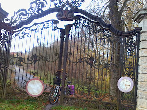 Photo: Rower wjechał w bramę prowadzącą do pałacu w Stolcu - zdjęcie Justyny