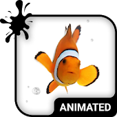 Clown Fish Animated Keyboard
