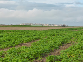 Photo: La chaussée Jules César passe en plein champ dans le Vexin