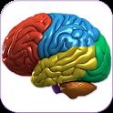 3D Human Brain icon