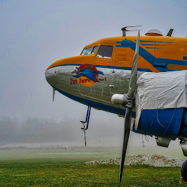 Old DC-3 by Dan Westtorp - Transportation Airplanes