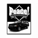 PEACE LOGISTICS icon