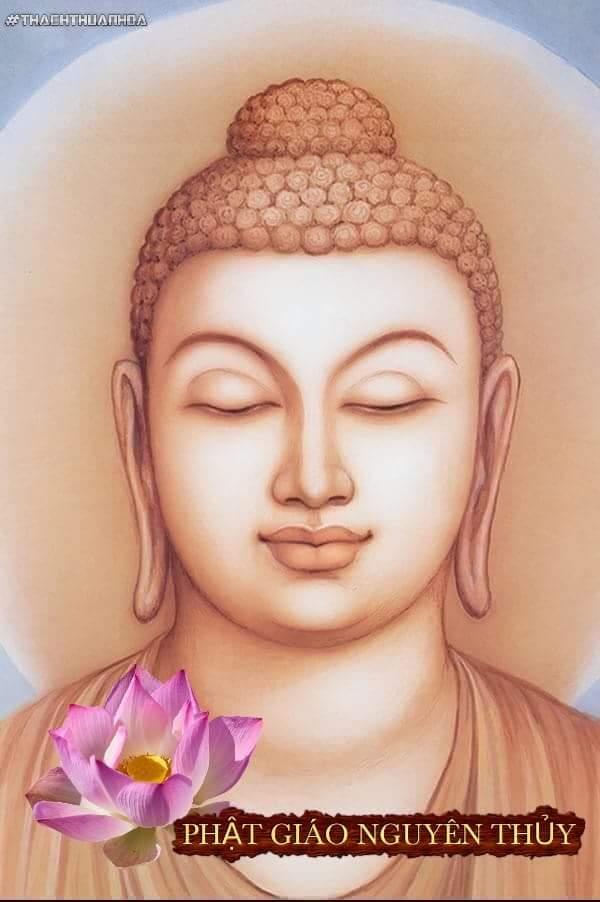 Đức Phật Nói Nhân Quả  VOFYob8nbYdc8L2ibwCDJXBzyyPMbtGd9E_C6RTbKTTi2f-Yw9NM4nL7tBqCD-G5eyfTXuJabSVyPO9fUPpC91vEAmtjK5lT5SCdRwBDWSrKi6A3tqmMPU5j7bDEsSkw8d1RIJ1D