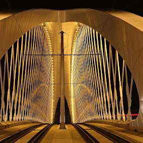 Troja Bridge - 13 by Drahomír Škubna - Buildings & Architecture Bridges & Suspended Structures