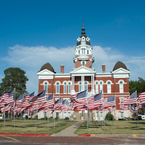 Tecumseh Ne town square by Gayle Mittan - Public Holidays July 4th ( patriotic, blue sky, veterans, celebrate, american flags, flags, soldiers, nebraska, holiday, america, veterans day, sunny day, memorial day, small town, rememberence, courthouse, military, memorial, tecumseh )
