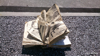 Photo: Abandoned manga on the way to the airport.