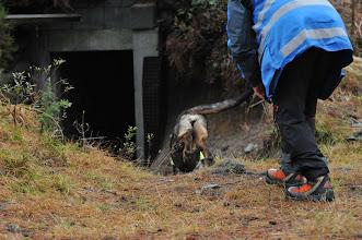 Photo: Dakota på vei ned i den mørke bunkersen