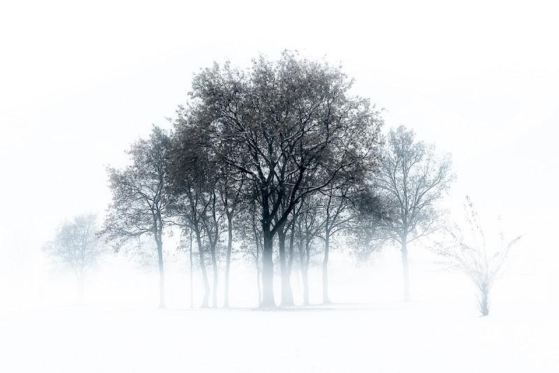 High key winter di Cristiano Giani
