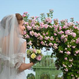 by Sasa Rajic Wedding Photography - Wedding Bride ( bride, wedding photography, wedding, portrait )