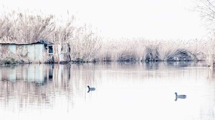 Pace e solitudine di RobertaSilvestro