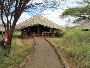 Photo: New tents at Kibo Safari Camp - Amboseli.   View from the path
