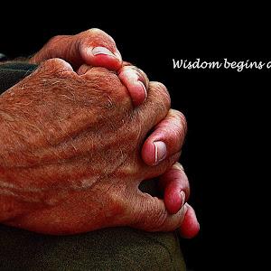 WISDOM PIXOTO.jpg