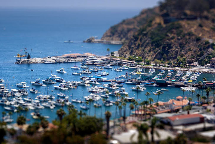 Catalina Island (15 Best Day Trips from Los Angeles).