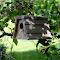 bhouse.jpg